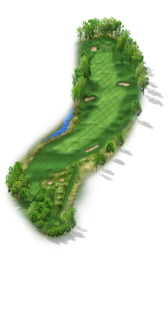 Image of hole No. 17
